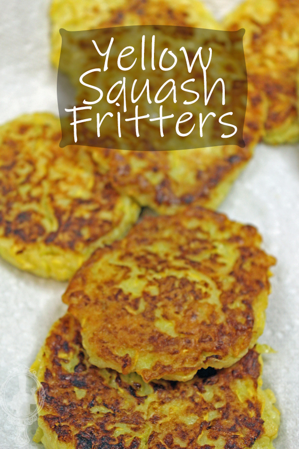Squash Fritters on a plate with paper towels absorbing the grease.