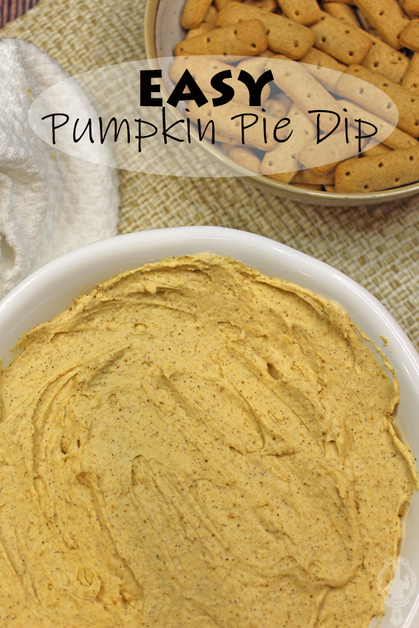 Overhead view of a serving bowl with pumpkin pie dip with graham cracker sticks in the background.